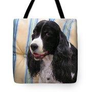 #940 D1043  Farmer Browns Springer Spaniel Smile Hidden Heart Tote Bag