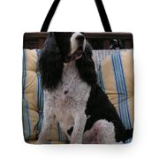 #940 D1045  Farmer Browns Springer Spaniel Tote Bag
