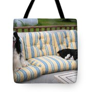 #940 D1082 Farmer Browns Separate But Always Together Tote Bag