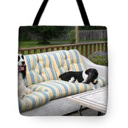 #940 D1094 Farmer Browns Springer Spaniel Together Tote Bag