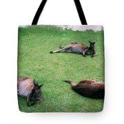 Australian Native Animals Tote Bag
