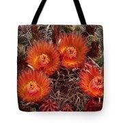 A Barrel Cactus Is Blooming Tote Bag