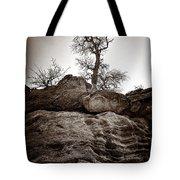 A Barren Perch - Sepia Tote Bag