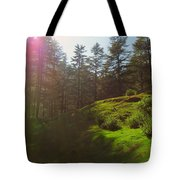 A Beautiful Day In Woods Tote Bag