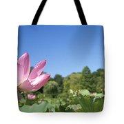 A Beautiful Emperor Lotus Blooms Tote Bag
