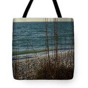 A Beautiful Planet Tote Bag