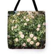 A Beautiful Rose Bush Castle Park 6 Tote Bag