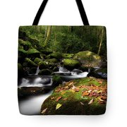 A Beautiful Season Tote Bag