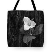 a beautiful Trillium  Tote Bag