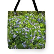 A Bed Of Bluebells Tote Bag