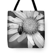 A Beetle And A Daisy  Tote Bag