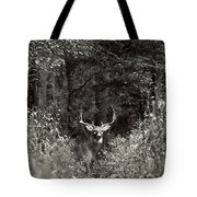 A Big Buck In Rut Tote Bag