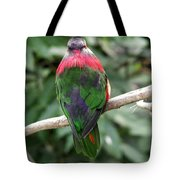 A Bird's Perspective Tote Bag