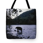 A Black Bear Searches For Sockeye Tote Bag