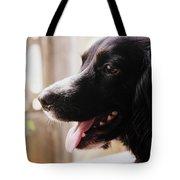 A Black Dog Tote Bag