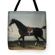 A Black Horse Held By A Groom Tote Bag