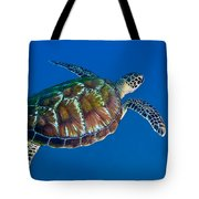 A Black Sea Turtle Off The Coast Tote Bag by Michael Wood
