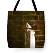 A Bluebird At The Governor's Palace Gardens Tote Bag