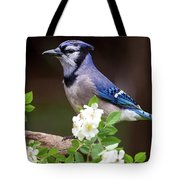 A Bluejay Bouquet Tote Bag