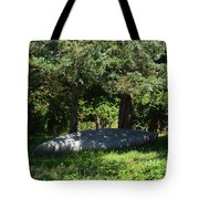 A Boat At Rest Tote Bag