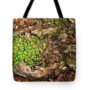 A Bowl Of Greens Tote Bag