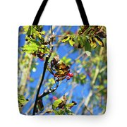 A Branch Standing Out From The Crowd Tote Bag