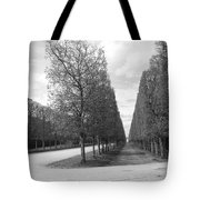 A Break In The Trees Tote Bag