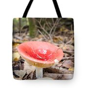 A Bright Red Mushroom Blooms Tote Bag