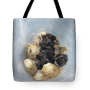 A Bucket Of Chicks Tote Bag