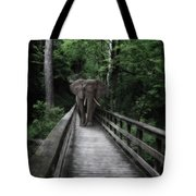 A Bull On The Boardwalk Tote Bag