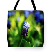 A Bunch Of Flowering Two-tone Grape Hyacinths, No.2. Tote Bag