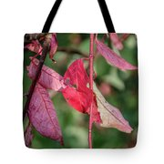 A Bunch Of Red Leaves Tote Bag