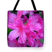 A Burst Of Pink Tote Bag