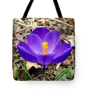 A Burst Of Purple In Springtime Tote Bag
