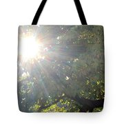 A Burst Of Sunshine  Tote Bag