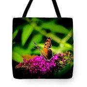A Butterflies World  Tote Bag