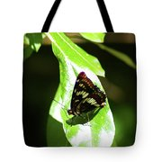 A Butterfly In The Sun  Tote Bag