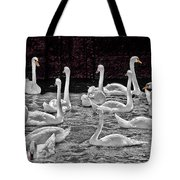A Cacophony Of Swans Tote Bag