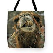 A Camel Displays Its Teeth Tote Bag