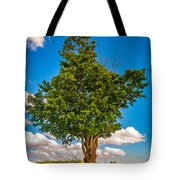 A Canadian Tree Tote Bag