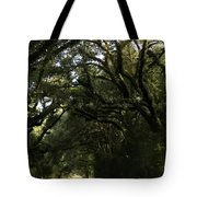 A Canopy Of Trees Tote Bag