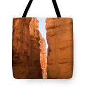 A Canyon Reflects Red Light Bouncing Tote Bag