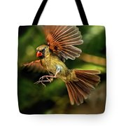 A Cardinal Approaches Tote Bag