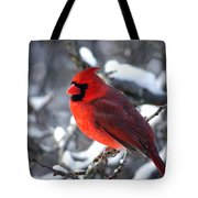 A Cardinal Day... Tote Bag