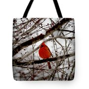 A Cardinal In Winter Tote Bag