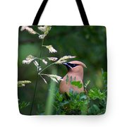 A Cedar Waxwing Facing Left Tote Bag