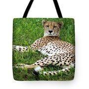 A Cheetah Resting On The Grass Tote Bag