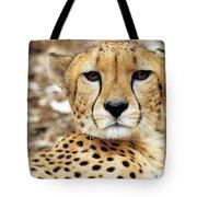 A Cheetah's Portrait Tote Bag