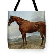A Chestnut Hunter In A Landscape Tote Bag