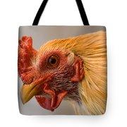 A Chicken In Burwell, Nebraska Tote Bag